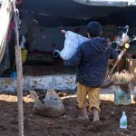 Idlib / Nordwestsyrien | Verteilung von Heizmitteln
